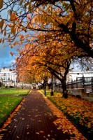 Autum at Dunn Square 1